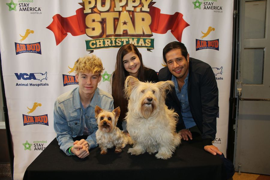 'Puppy Star Christmas' Premiere