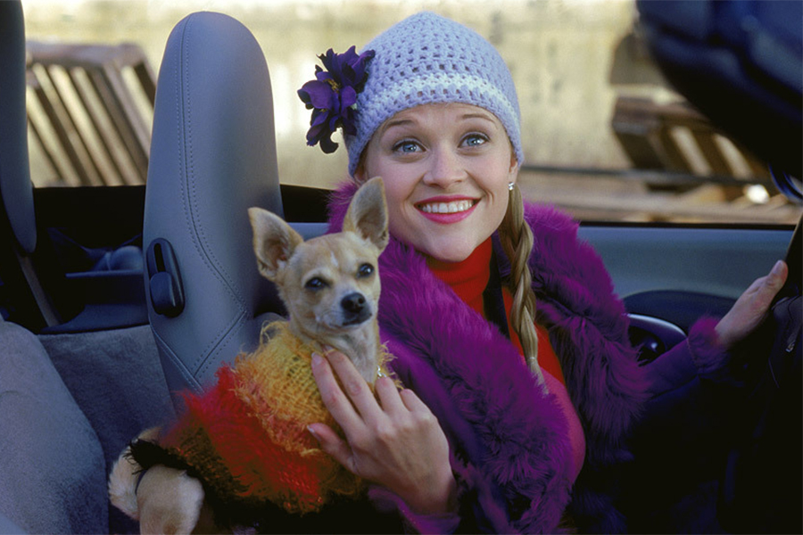 Shout! Factory Releasing 'Legally Blonde' Blu-ray Collection Feb. 26