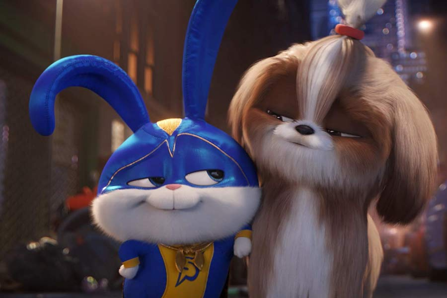 The Secret Life Of Pets 2 Coming To Digital Aug 13 Disc Aug 27 From Universal Media Play News