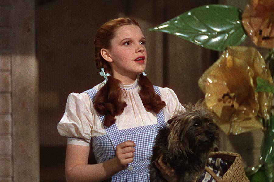 'Wizard of Oz' Off to 4K Oct. 29