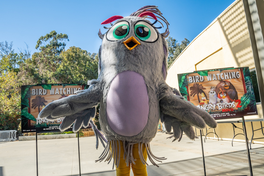 'Angry Birds 2' Goes to the Zoo
