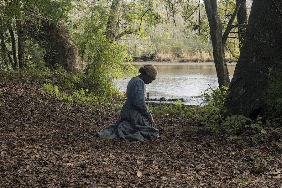 Biopic 'Harriet' Coming to Digital Jan. 14, Disc Jan. 28 From Universal