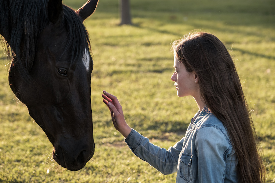 Disney+ to Bow 'Black Beauty' Later This Year