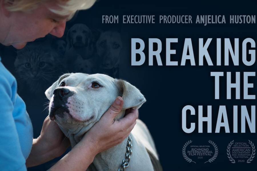 Animal-Rescue Doc 'Breaking the Chain' Coming to Digital HD Sept. 1